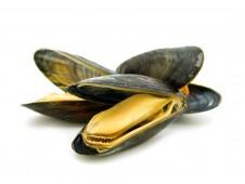 Мидии гигант-киви ½ раковины